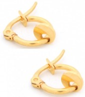 A-C20.3 E015-012XS Stainless Steel Earrings with Coin 10mm Gold