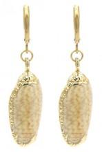 B-F16.2  E2121-044G S. Steel Earrings Shell 1x3.5cm Gold