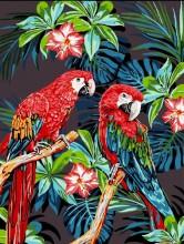 Y-B6.5  MS7397 Paint By Number Set Parrots 50x40cm