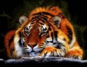 T-N8.1 X213 Diamond Painting Set Tiger 40x30cm