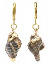 A-G9.2  E2121-042G S. Steel Earrings Shell 1x3.5cm Gold