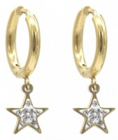 A-A20.3 E1934-003G Stainless Steel 15mm Earrings with 10mm Star Gold