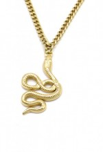 A-D22.3 N010-029G S. Steel Chain Necklace with 3cm Snake
