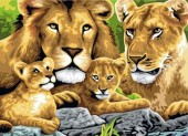 Z-B1.5  MS8243 Paint By Number Set Lions 50x40cm