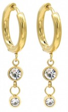 C-B7.1  E1934-001G Stainless Steel 15mm Earrings with 15mm Charms Gold